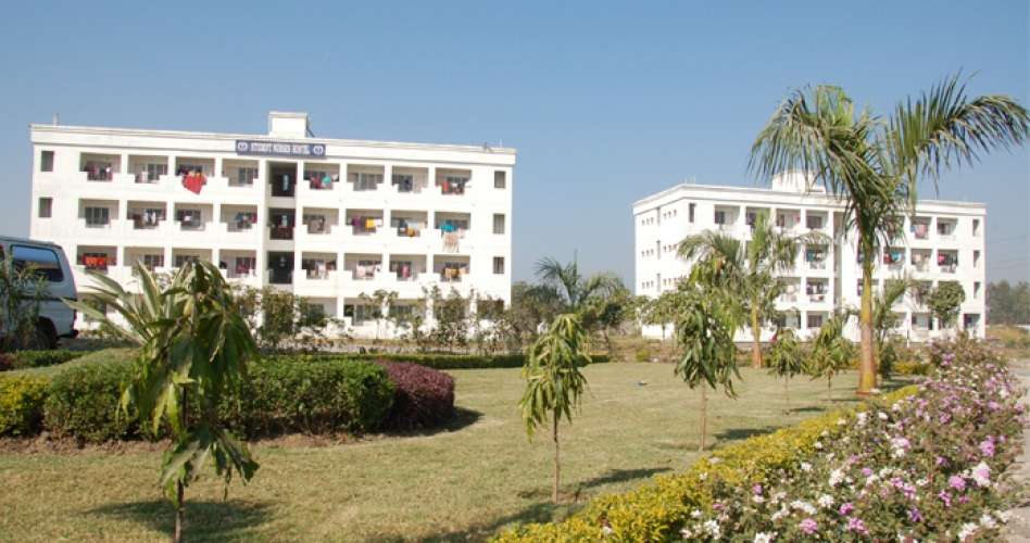 Hostels & Residential Premises